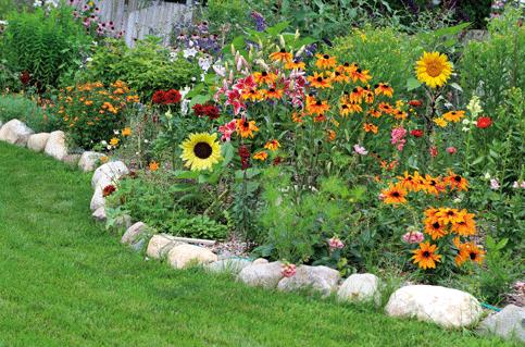 Flores rodeadas de piedras grandes que no necesitan cable perimetral